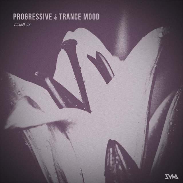 Progressive & Trance Mood, Vol. 2