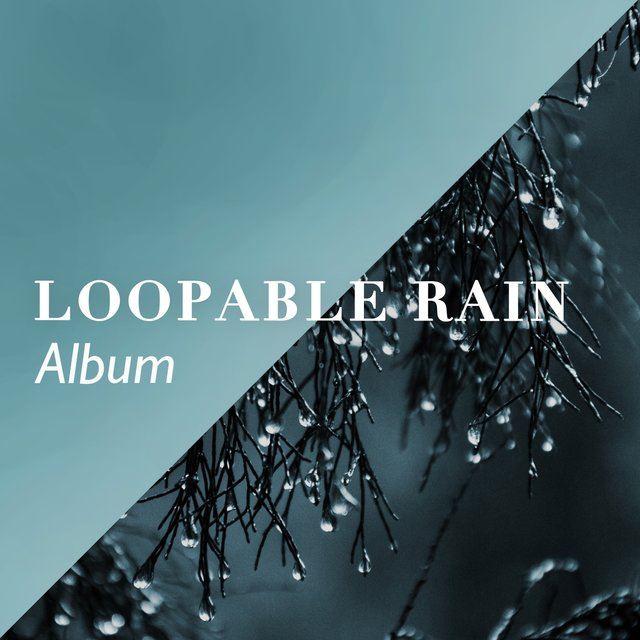 2020 Background Loopable Rain & Water Album