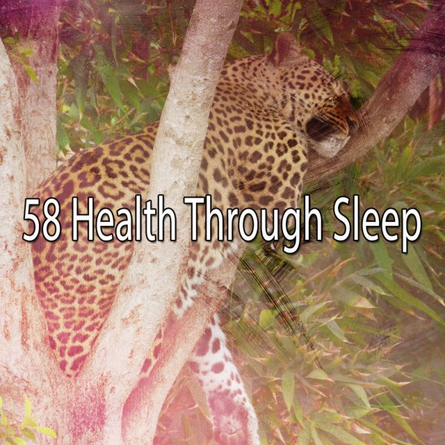 58 Health Through Sleep