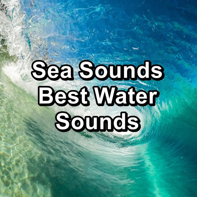 Sea Sounds  Best Water Sounds