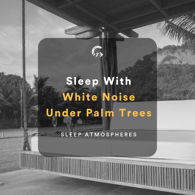 Sleep With White Noise Under Palm Trees