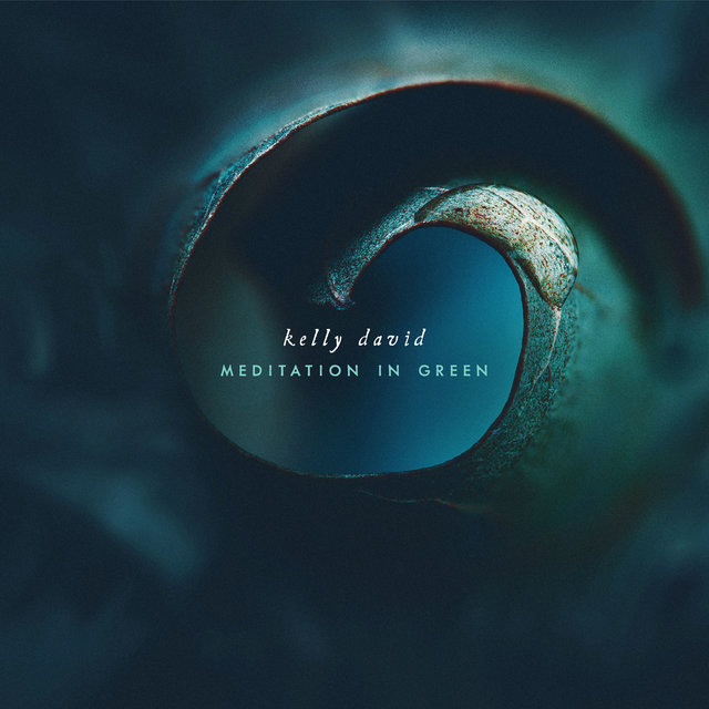 Cover art for album Meditation in Green by Kelly David