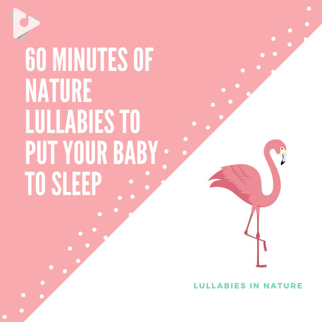 60 Minutes of Nature Lullabies to Put Your Baby to Sleep