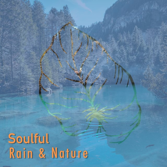 # Soulful Rain & Nature