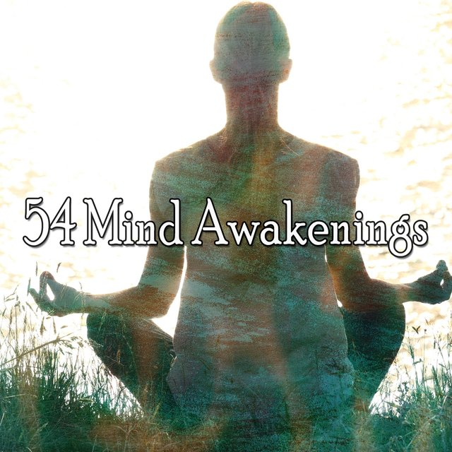 54 Mind Awakenings