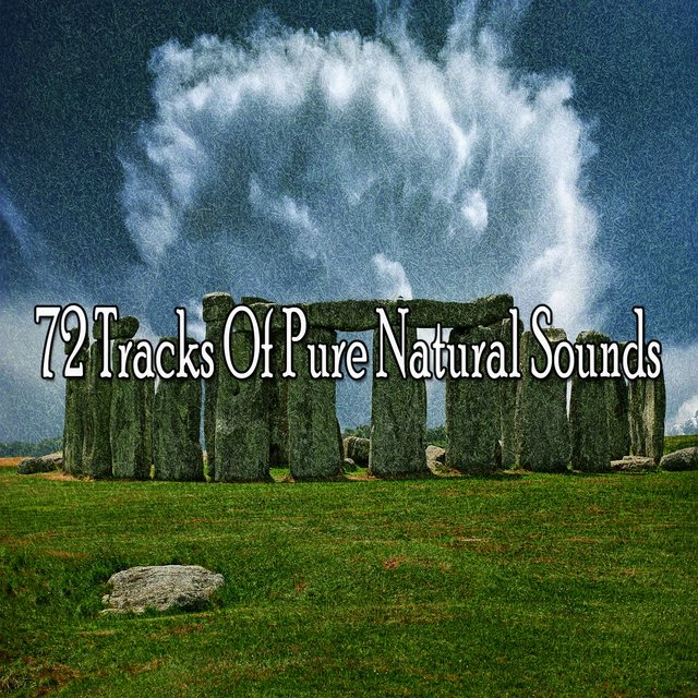 72 Tracks of Pure Natural Sounds