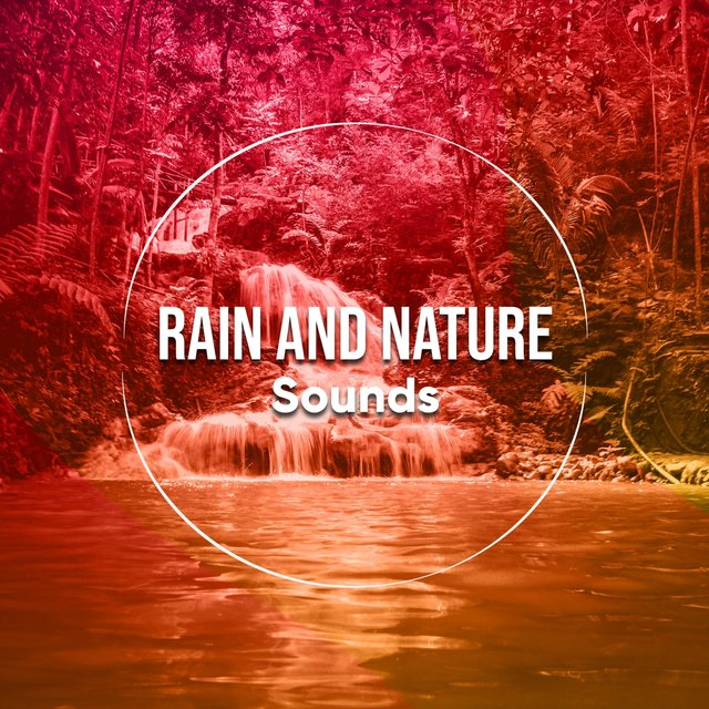 Background Native Rain and Nature Sounds