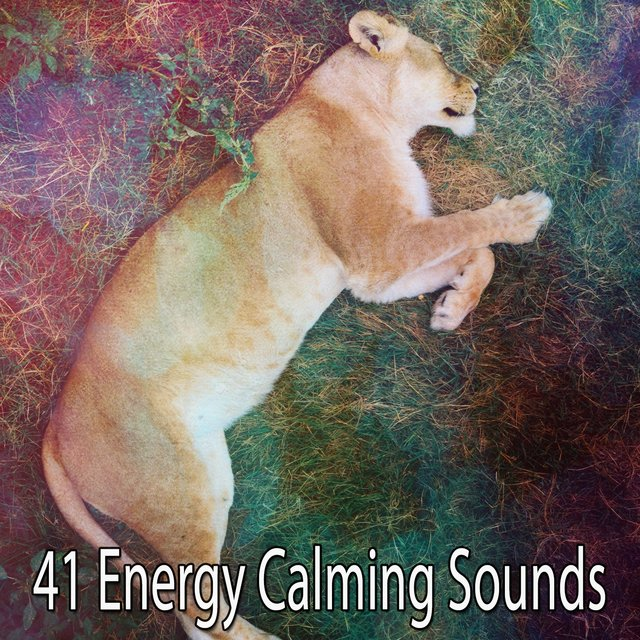41 Energy Calming Sounds