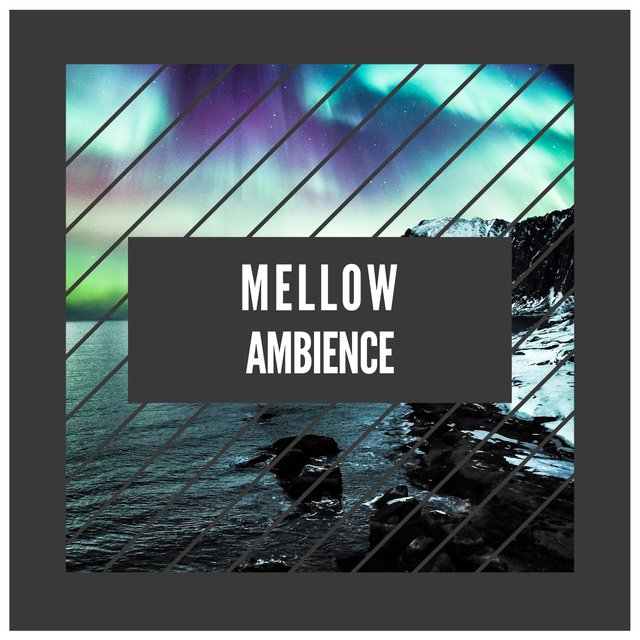 # 1 Album: Mellow Ambience