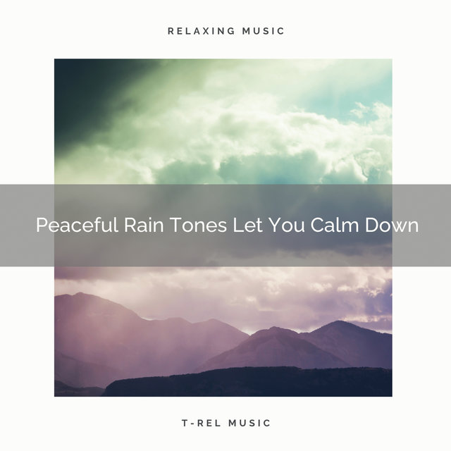 Peaceful Rain Tones Let You Calm Down