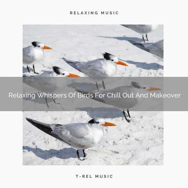 2020 Best: Relaxing Whispers Of Birds For Chill Out And Makeover