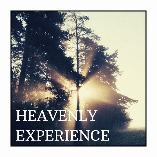 Heavenly Experience: Improve your Quality of Life, Provide Relief from Stress and Anxiety