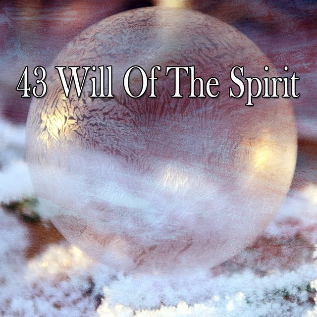 43 Will of the Spirit