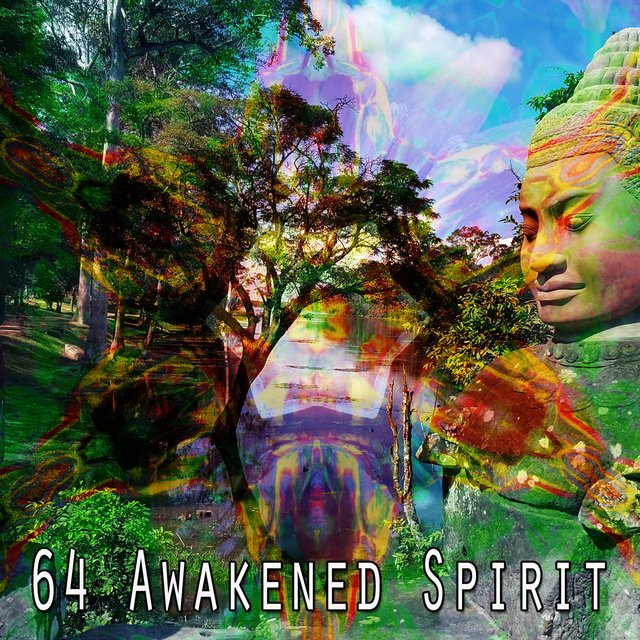 64 Awakened Spirit