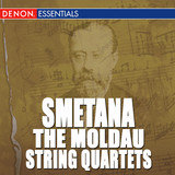 Quartet for Strings No. 1 in E Minor: I. Allegro moderato alla Polka