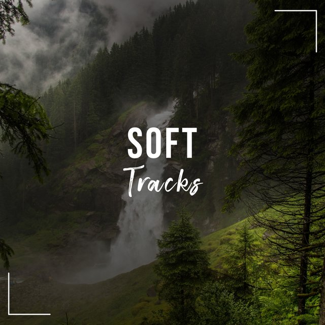 2020 Soft Healthy Living Tracks