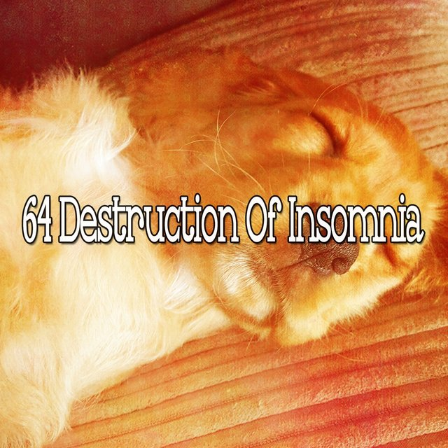 64 Destruction of Insomnia