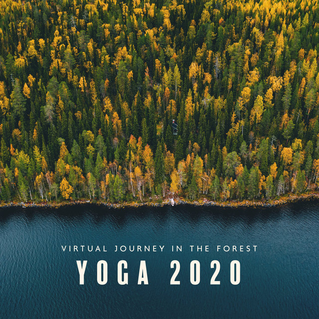 Virtual Journey in the Forest: YOGA 2020 - Nature Sounds for Meditation, Mindfulness, Morning Mood