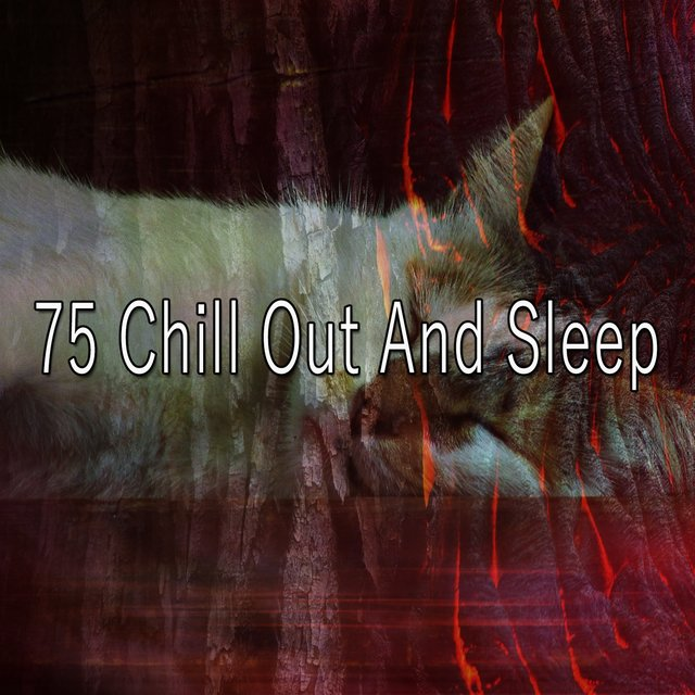 75 Chill out and Sle - EP