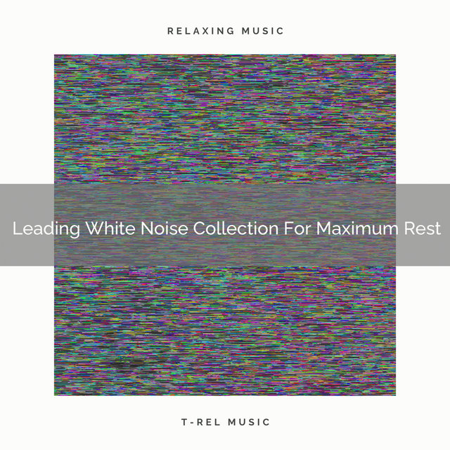Leading White Noise Collection For Maximum Rest