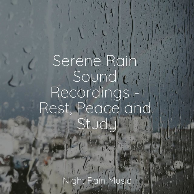 Serene Rain Sound Recordings - Rest, Peace and Study