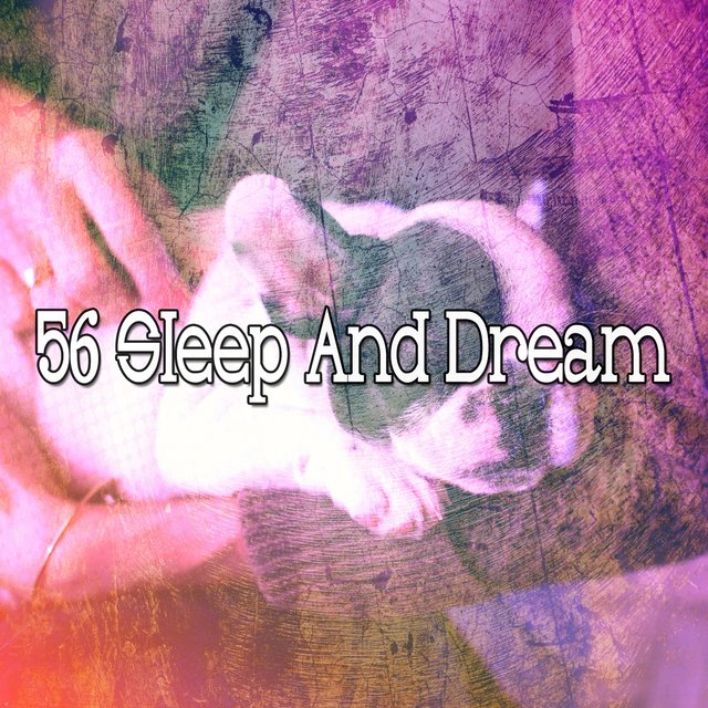 56 Sleep and Dream