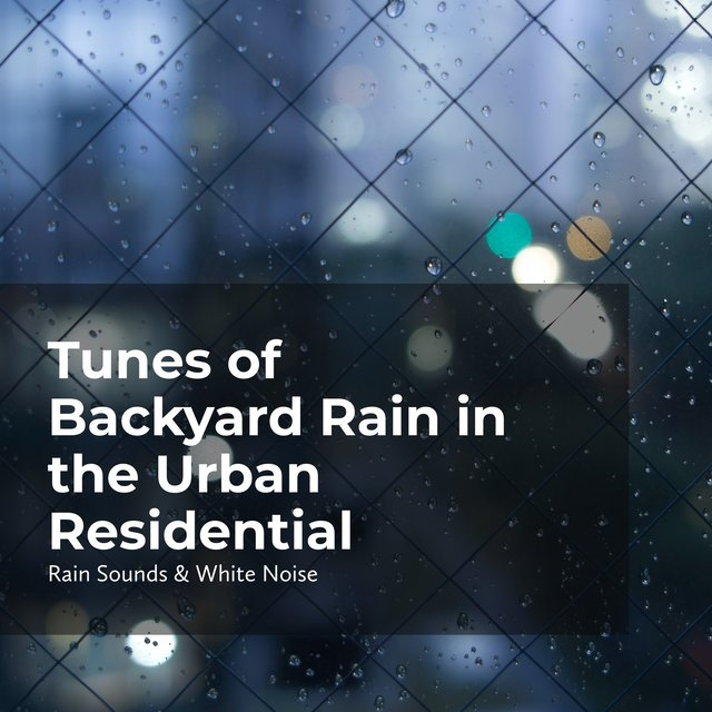 Tunes of Backyard Rain in the Urban Residential