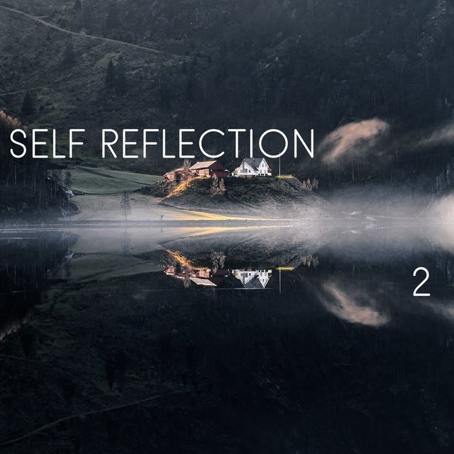Self Reflection, Vol. 2