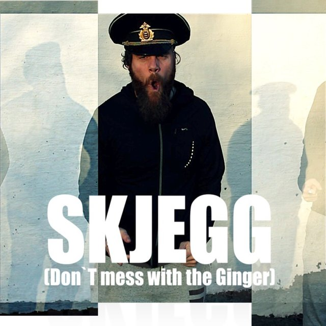 Skjegg (Don`t Mess with the Ginger)