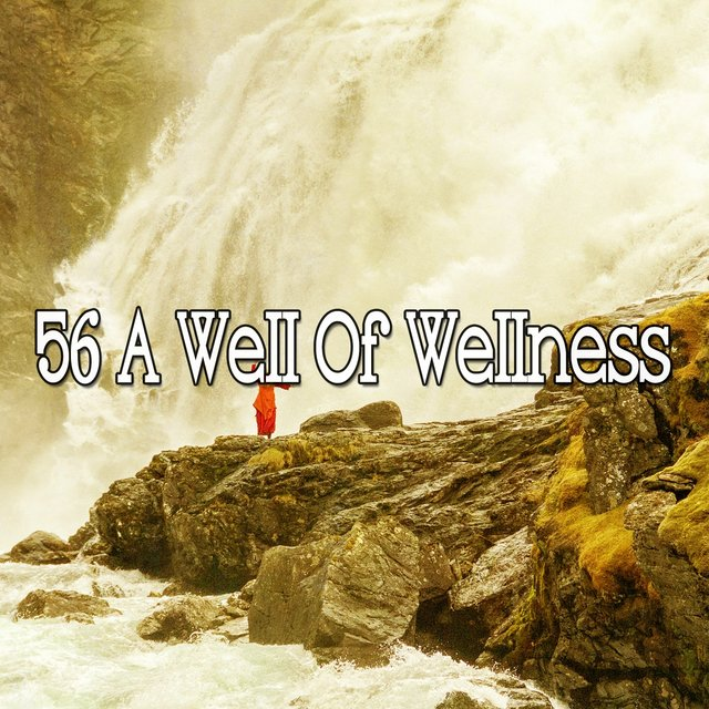 56 A Well of Wellness