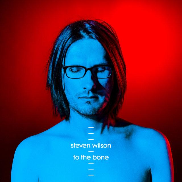 Cover art for album To The Bone by Steven Wilson