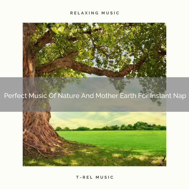 Perfect Music Of Nature And Mother Earth For Instant Nap