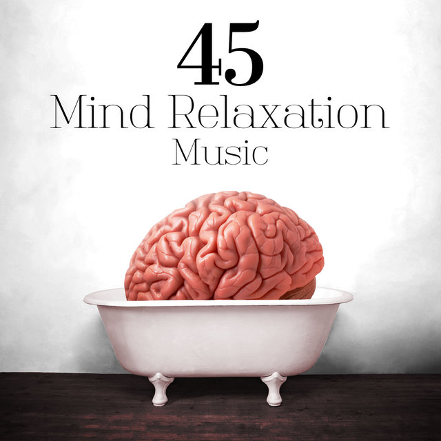 45 Mind Relaxation Music