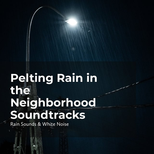 Pelting Rain in the Neighborhood Soundtracks