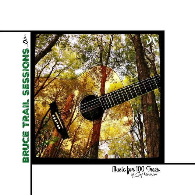 Bruce Trail Sessions: Music for 100 Trees