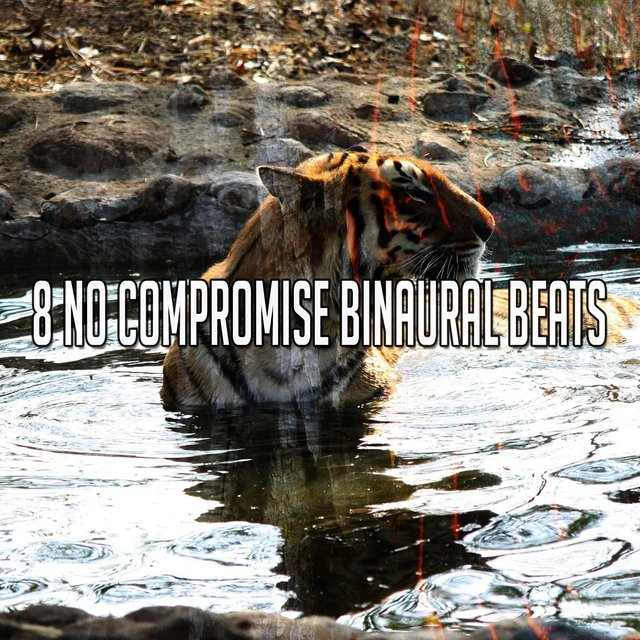 8 No Compromise Binaural Beats