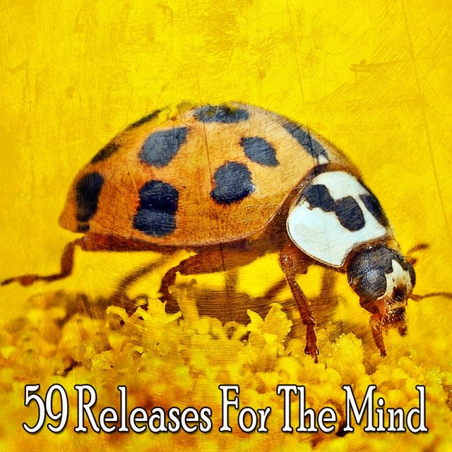 59 Releases for the Mind