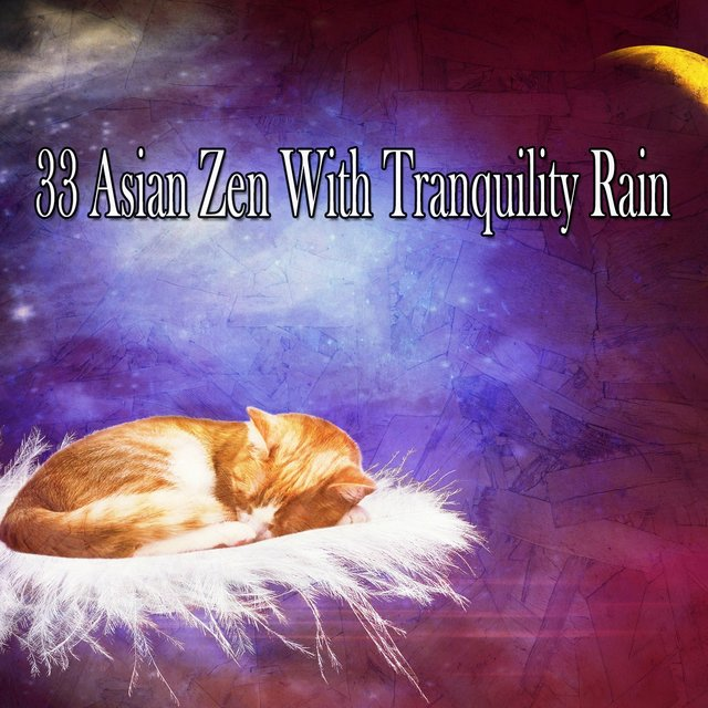 33 Asian Zen with Tranquility Rain