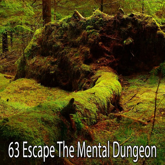63 Escape the Mental Dungeon