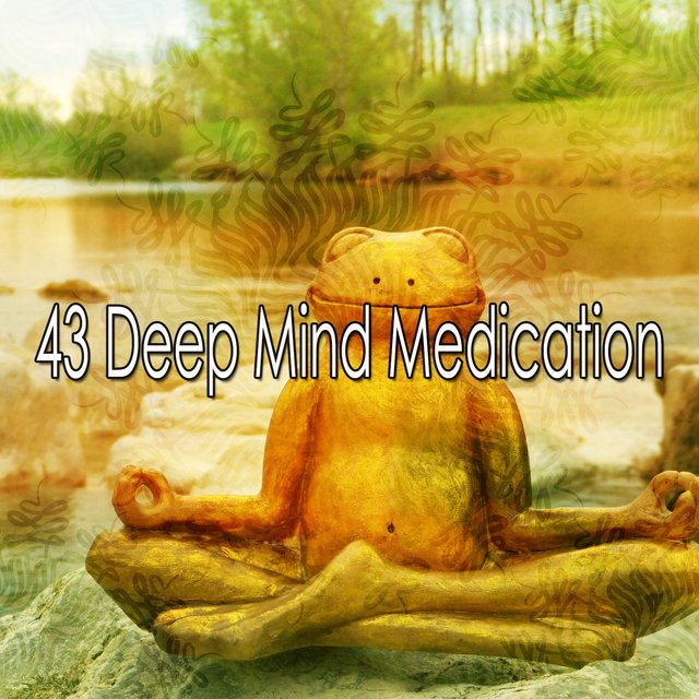 43 Deep Mind Medication