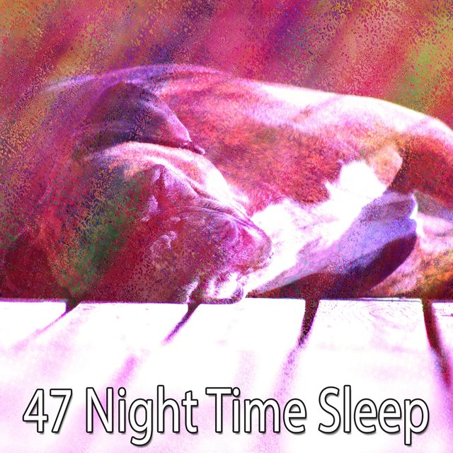 47 Night Time Sle - EP