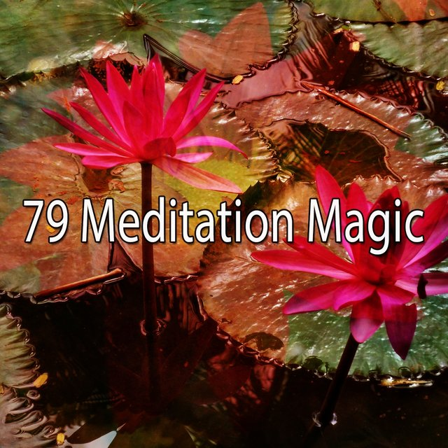 79 Meditation Magic