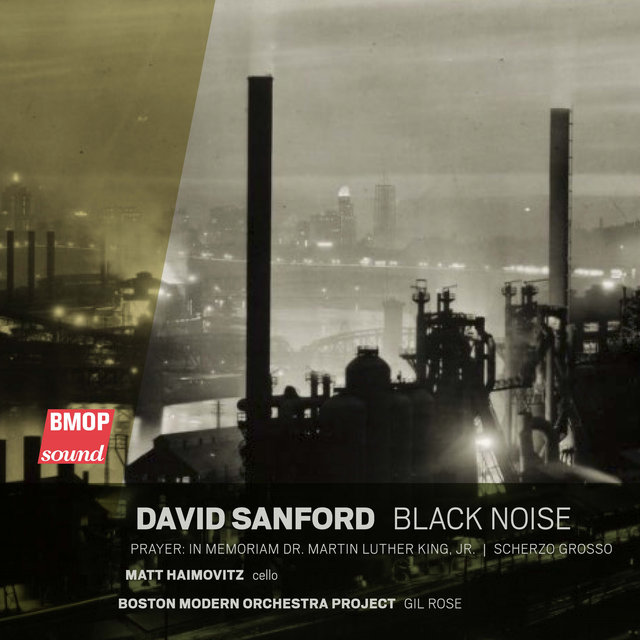 David Sanford: Black Noise