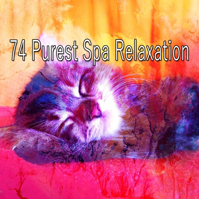 74 Purest Spa Relaxation