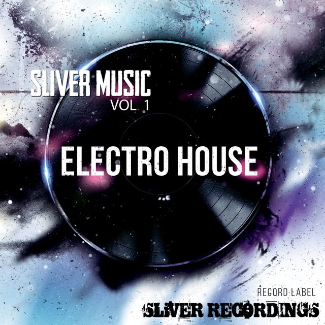 Sliver Music: Electro House, Vol.1