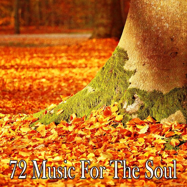72 Music for the Soul