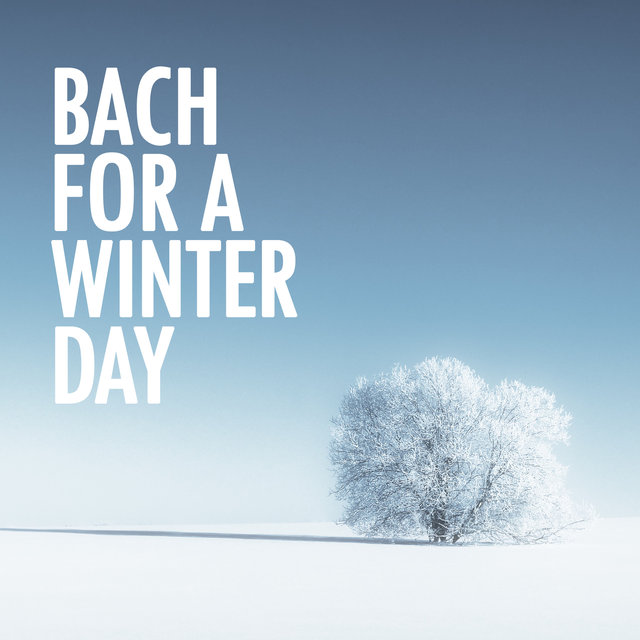 Bach for a Winter Day