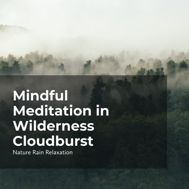 Mindful Meditation in Wilderness Cloudburst