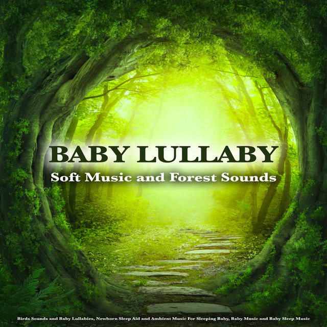 Baby Lullaby: Soft Music and Forest Sounds. Birds Sounds and Baby Lullabies, Newborn Sleep Aid and Ambient Music For Sleeping Baby, Baby Music and Baby Sleep Music