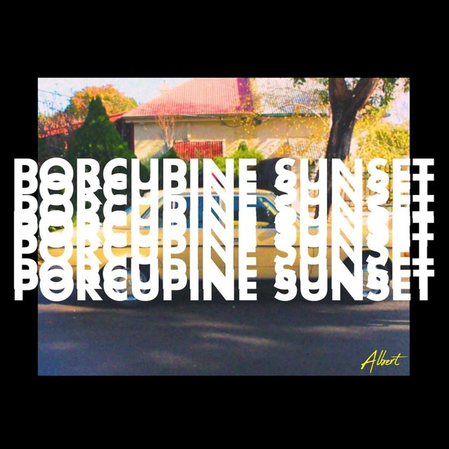 Porcupine Sunset